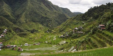 Batad in all its glory