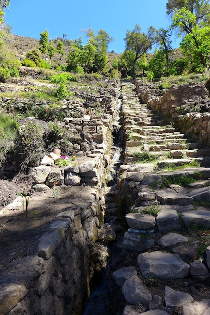 The famous Inca steps and irrigation