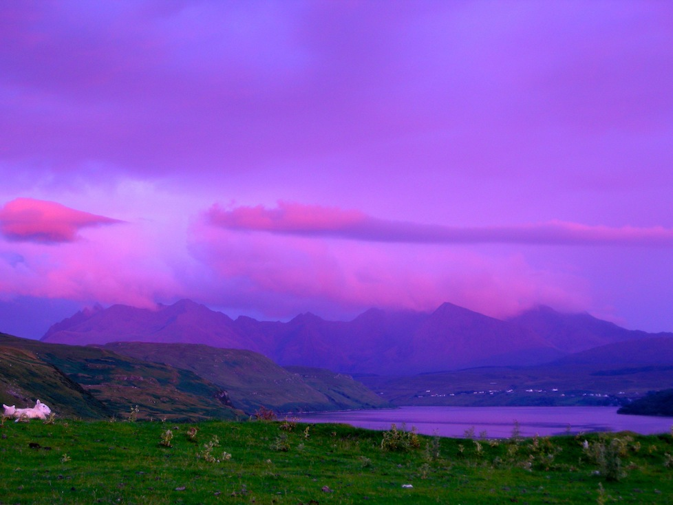 I live within driving distance of this majestic place - Isle of Skye, Scotland