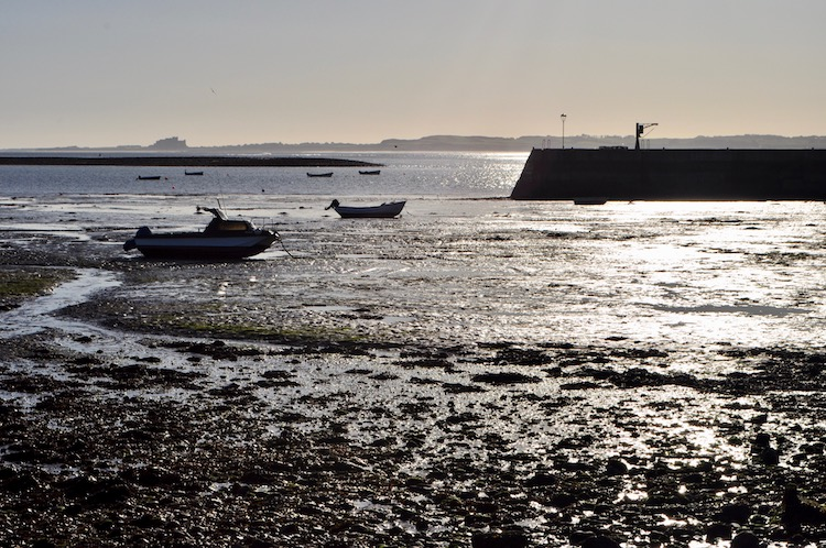 Harbour Holy Island Low Tide